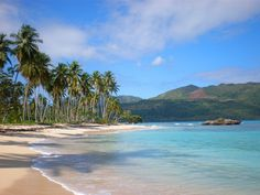 Playa Rincon, Domincan Republic, The most beautiful secluded beach!