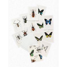 Hagedornhagen Postcards #1 - 12 vlinders en kevers