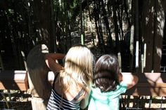 The wonder of a child at the Sacramento Zoo #TurquoiseCompass