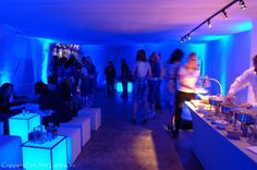 Labatt Blue Light House Party, Stowe, Vermont 2011.  Dark Star provided all kinds of customized, specialty lighting services for this event, including all of the blue light in this picture, the track lighting above the buffet, and the control for the audio in this room.
