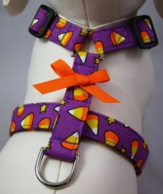 Purple Candy Corn Dog Harness!! I want this for Gladys!