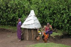 Masai village life
