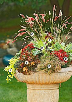 Boost a set of great plants with a fun container, such as an old, weathered birdbath. Or consider a bushel basket, wooden crate, or other material with character. #fallcontainergarden #containergardenplans #fallgardening #flowerpots #bhg Fall Container Plants, Fall Containers, Container Flowers, Container Gardening, Real Flowers, Colorful Flowers, Seasonal Flowers, Flowering Kale, Gardens