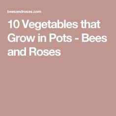 10 Vegetables that Grow in Pots - Bees and Roses