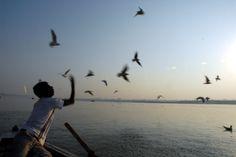 Varanassi.India.