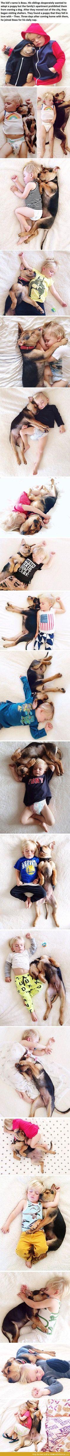 Preciosas imágenes de un peque durmiendo con su mascota