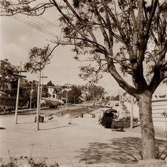 Cemitério do Araçá. São Paulo do Passado