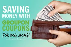 Dog Moms Can Save with Groupon Coupons Too! #GrouponCoupons #sponsored | http://www.beaglesandbargains.com/dog-moms-save-groupon-coupons/
