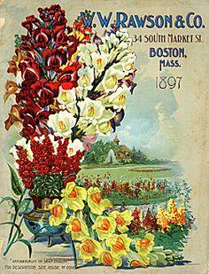 W W Rawson & Co, Seedsmen, Boston, Massachusetts