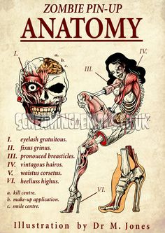 Pin-up Zombie Anatomy by ScreamingDemons, more skull inspirations and designs at skullspiration.com