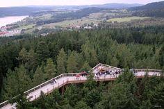 Treetop Walkway - Lipno nad Vltavou, Czech Republic