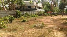 5 Cent Residential Plot near Palakkal,Thrissur.
