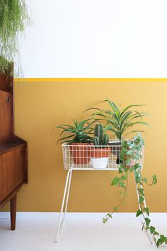 Plantenrek in urban jungle interieur met retro kast en okergele muur