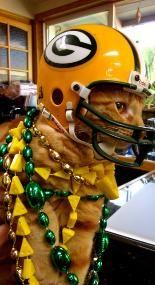 Packer Fur Friends On Pinterest Packers Green Bay