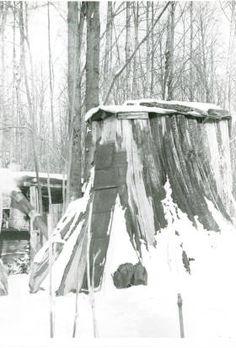 Stump House, Sedro-Woolley, WA :: Sedro-Woolley Heritage