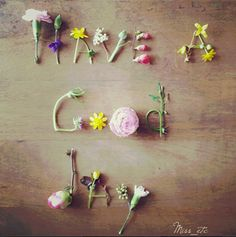 Have a Good Day Quotes - Bing Images Have Good Day, Good Morning Good Night, Good Morning Wishes, Flower Words, Flower Quotes, Flower Art, Butterfly Art, Art Flowers, Happy Monday Quotes