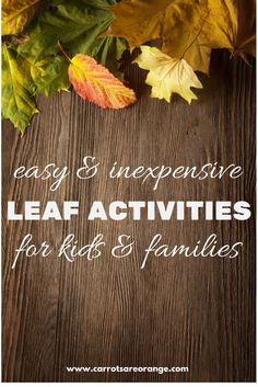 I discovered so many Easy, Inexpensive & Creative Leaf Activities on Pinterest, I decided I had to share my top 8 Easy, Inexpensive & Creative Leaf Activities.
