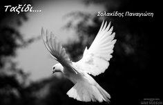 (Ερωτική Ποίηση) Ταξίδι του Σολακίδη Παναγιώτη. Ενα ταξίδι στην ερωτική ποίηση! Ταξίδι αλαργινό Σαν κάποια ανάμνηση ξεχασμένη στο μπαούλο των παιδικών σου χρόνων Διαβάστε το ποίημα https://web.facebook.com/photo.php?fbid=132515590442787&set=gm.891386517581412&type=3&theater