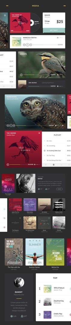 Aves UI Kit #UserInterface #UI #Design