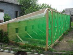Как построить летний курятник как построить крышу дома своими руками проекты