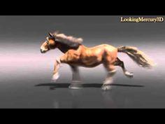 Horse 3D Animation - YouTube