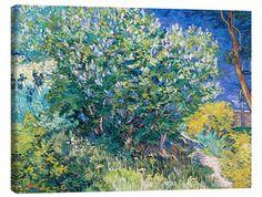 Canvas print Lilac Bush - Vincent van Gogh Vincent Van Gogh Artwork, Buy Prints Online, Van Gogh Portraits, Lily And Val, Lilac Bushes, Green Wall Art, Popular Artists, Vintage Wall Art, Nursery Wall Art