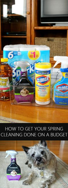 You don't have to spend a fortune to get your house in top shape! These tips will help you get your spring cleaning done on a budget! #ad #DGSpringCleanEssentials