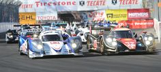 Patron American Le Mans Series  Saturday at the 39 Annual Toyota Grand Prix of Long Beach.     Stephen Carr/  Los Angeles Newspaper Group