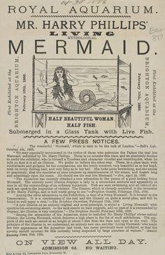 Highlights from the Victorian circus freak show (posters) - Flashbak Real Mermaids, Mermaids And Mermen, Fantasy Mermaids, Art Vampire, Vampire Knight, Vintage Circus, Vintage Ads, Vintage Classics, Vintage Glam
