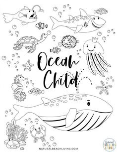 This Free Printable Ocean Activity Pack is so much fun for early learners! Engage your preschoolers and young children with an exciting summer theme full of hands-on learning with these free preschool printables. Number Worksheets Kindergarten, Kindergarten Colors, Printable Preschool Worksheets, Kindergarten Lesson Plans, Free Preschool, Free Printable, Ocean Coloring Pages, Main Idea Worksheet, Animal Worksheets