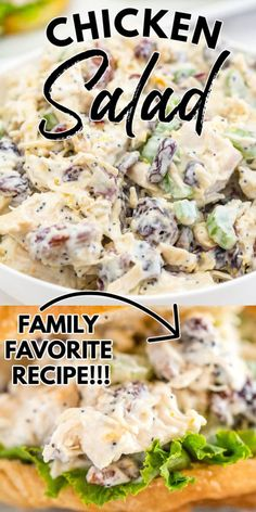 This Easy Cranberry Pecan Chicken Salad recipe is creamy, delicious, and some serious comfort food. It's a great year-round recipe that everyone loves! via @easybudgetrecipes Pecan Chicken Salads, Yummy Chicken Recipes, Easy Salad Recipes, Easy Salads, Sandwich Recipes, Quick Recipes, Side Dish Recipes, Budget Dinners, Easy Budget
