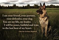I am your friend, your partner, your defender, your dog. You are my life, my love, my leader. I will be yours, faithful and true, to the last beat of my heart. I AM THE GERMAN SHEPHERD