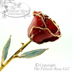 This Burgundy Forever Rose is a deep red version of our famous 24K Gold Trimmed Rose!