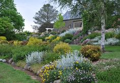 Open Gardens Australia-Eden Park at Romsey.Formal and cottage elements featuring roses box hedges, perennials and mature trees.