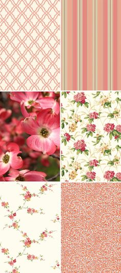 The depth of color in the dogwood blossoms is richly intriguing and York has embraced this deep coral toned hue in a variety of designs for use throughout the house.  Try a medallion trellis for a softer side to the geometric trend, or a variegated stripe that has the benefit of the whole coral family color range. http://lelandswallpaper.com