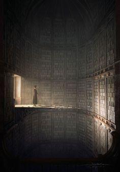 Jie Ma, a library (OMG!) • Non conosco voluttà più pungente del leggere, non già un libro da cima a fondo, ma, pescando a caso, qui una pagina lì un rigo, ritti in piedi, dinanzi alle cascate...