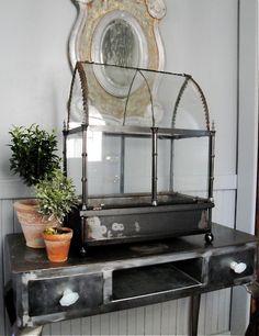 Glass terrarium wardian case by plainandelegant on Etsy, $495.00