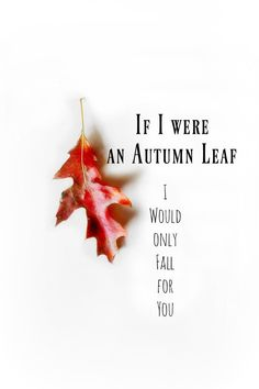 If I Were an Autumn Leaf. Inspiration Quote. par 3vintagehearts