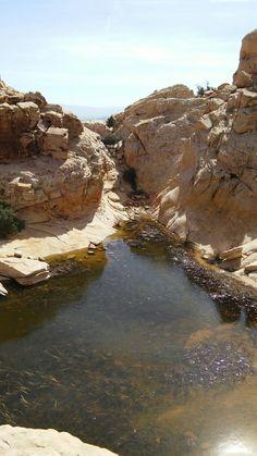 Largest Tank, Calico Tanks Trail, Red Rock Canyon National Conservation Area, Nevada
