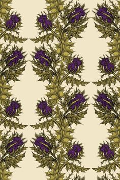 Wallpaper does not get more beautiful than the stuff from Timorous Beasties.  So, so cool...