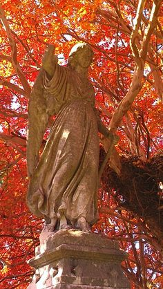 Angel, Hollywood Cemetery, Richmond VA Hollywood Cemetery, Haunting Photos, Old Cemeteries, Memento Mori, Stone Art, Art And Architecture, Wonderful Places, Dusk, Sculptures