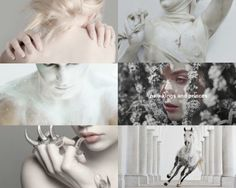 tales from the shadowhunter academy: aesthetics