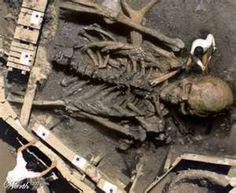 nephilim.....what is with all these giant skeletons everyone is finding lately ?