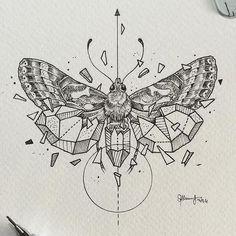 Эскиз геометрического мотылька