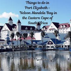Things to do in Port Elizabeth in the Eastern Cape of South Africa