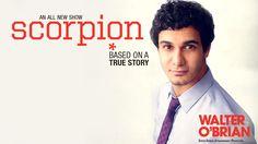 scorpion the show - Google Search