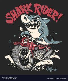 Shark Rider on motorcycle vector T-Shirt design. Shark Illustration, Illustration Design Graphique, Logo D'art, Art Logo, T Shirt Design Vector, Shirt Designs, Arte Alien, Shark Art, Rider