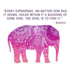 Every experience, no matter how bad it seems, holds within it a blessing of some kind. The goal is to find it.