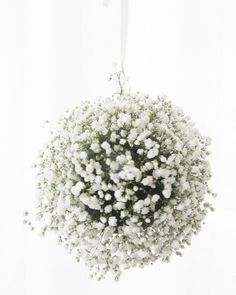 Step By Step : Baby's Breath Globe yes please! hang these in the trees with the cans and jars :-) maybe spray em with glitter?