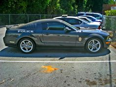 Mustang from the Springdale Police Department